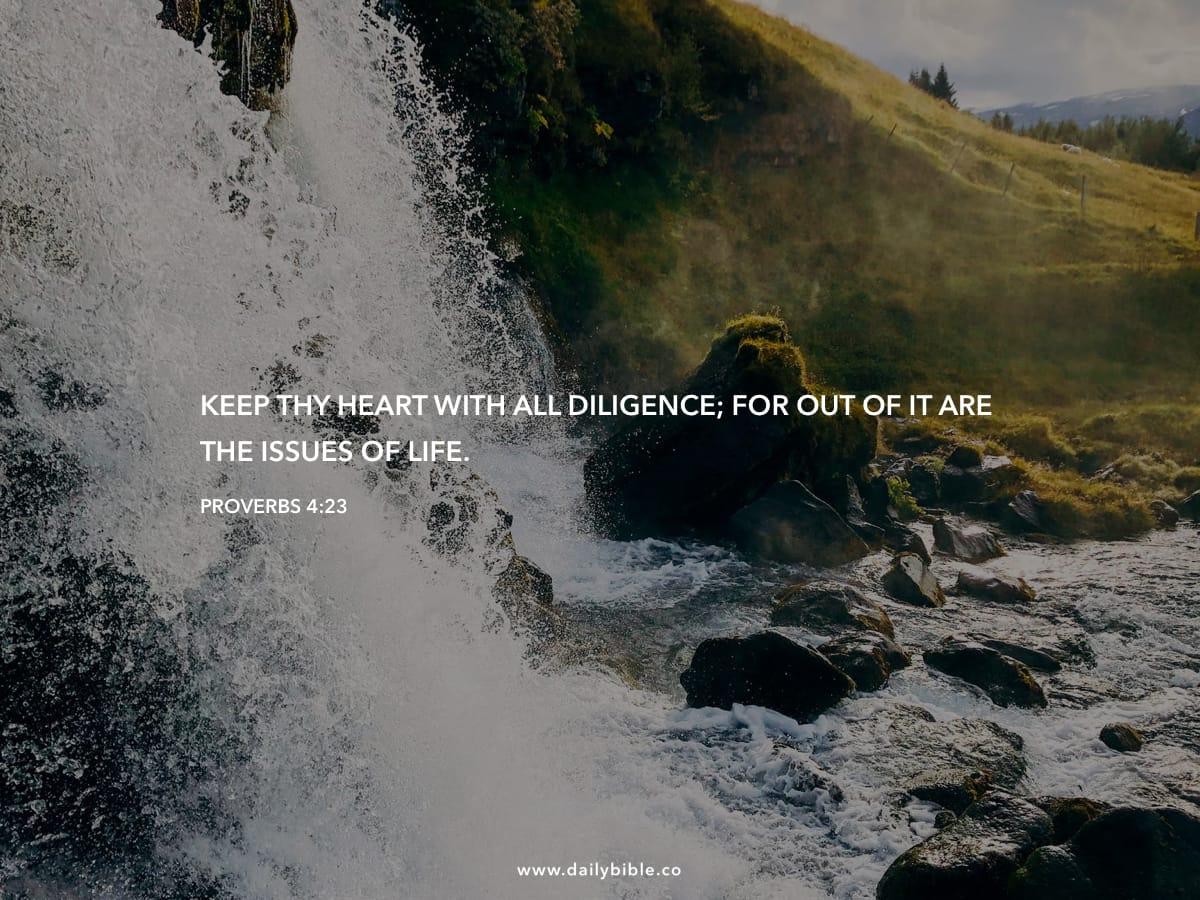 Proverbs 4 Kjv