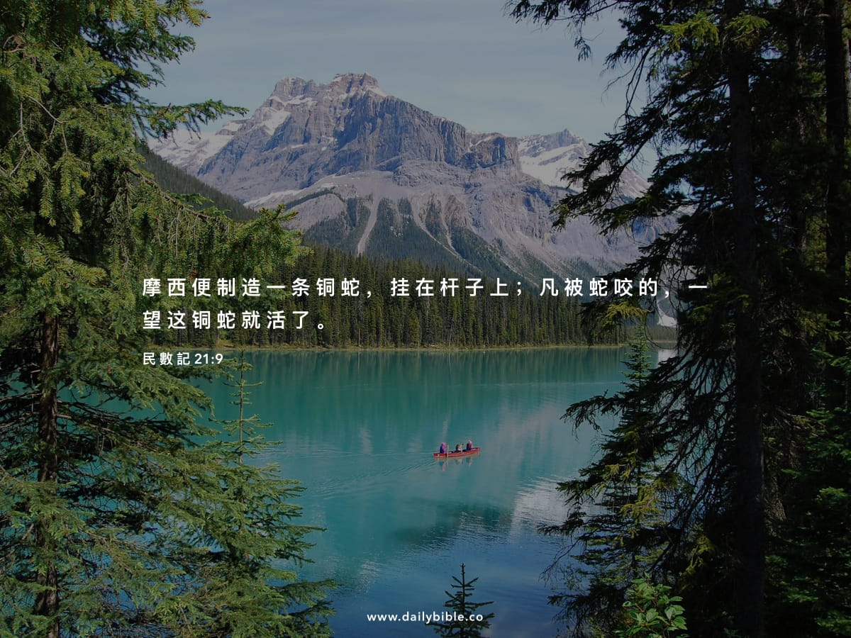 Image result for (民21:9