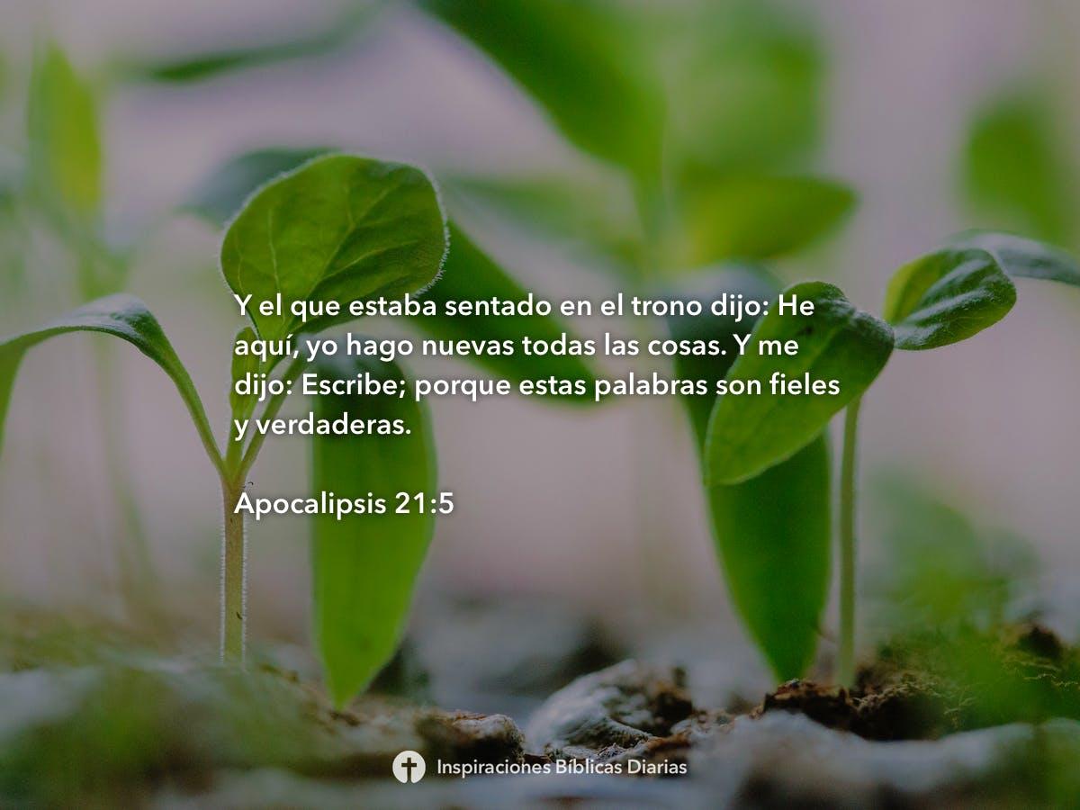 Apocalipsis 21 5 Inspiraciones Bíblicas Diarias