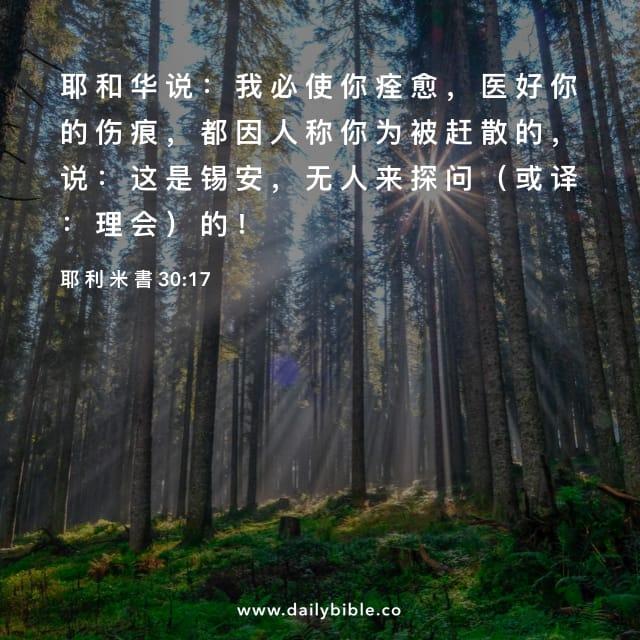 Image result for 「我必医好你的伤痕」(耶30: 17)