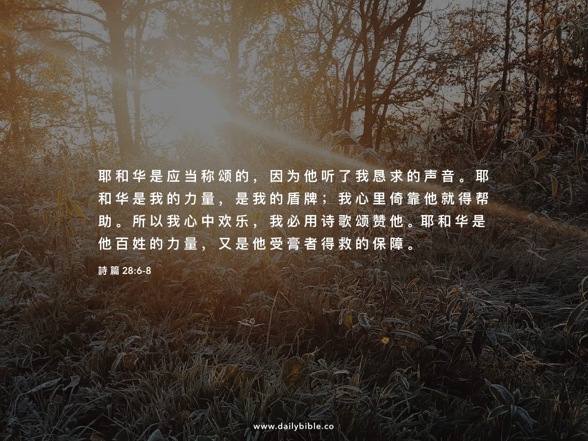 """Image result for """"耶和华是应当称颂的,因为他听了我恳求的声音。耶和华是我的力量,是我的盾牌,我心里倚靠他就得帮助。"""" (诗 28:6 )"""